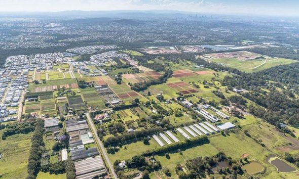 Developer Demand for Brisbane Suburban Sites
