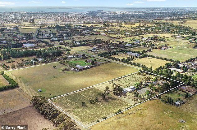 Revealed The top 10 suburbs to buy a bargain home and reap long-term capital growth returns - but experts warn there's a catch