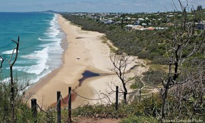 Infrastructure projects instil confidence in Sunshine Coast residential market HTW residential