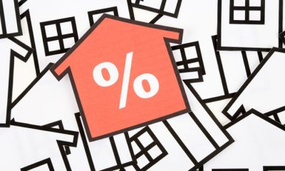 Housing markets aren't just rising because of record low interest rates Hotspotting's Terry Ryder